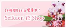 Seikaen 花 Shop